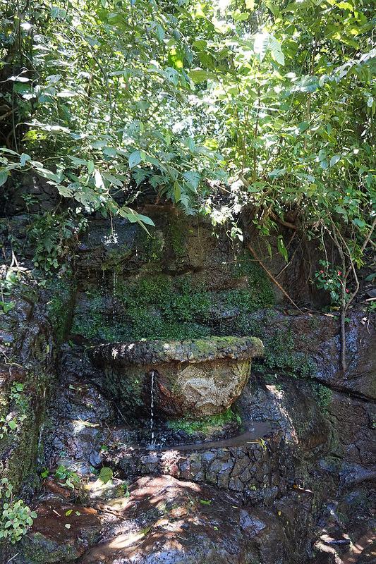イグアス国立公園の画像16