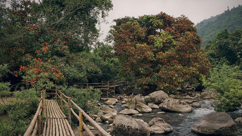 フォン・ニャ-ケ・バン国立公園の画像2