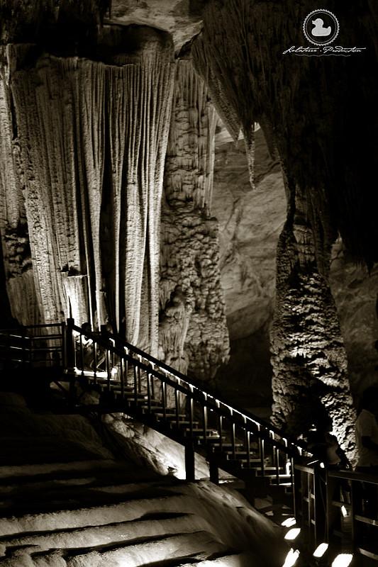 フォン・ニャ-ケ・バン国立公園の画像23