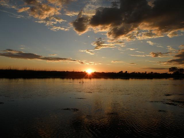 オカバンゴ・デルタの画像16