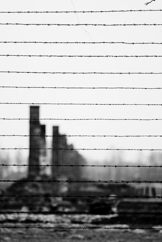 アウシュヴィッツ・ビルケナウ ナチスドイツの強制絶滅収容所(1940-1945)の画像2
