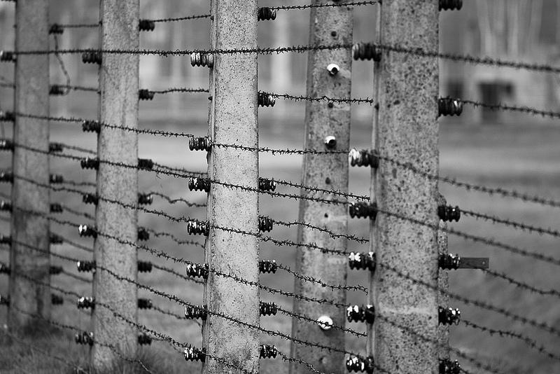 アウシュヴィッツ・ビルケナウ ナチスドイツの強制絶滅収容所(1940-1945)の画像3