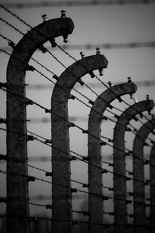アウシュヴィッツ・ビルケナウ ナチスドイツの強制絶滅収容所(1940-1945)の画像4