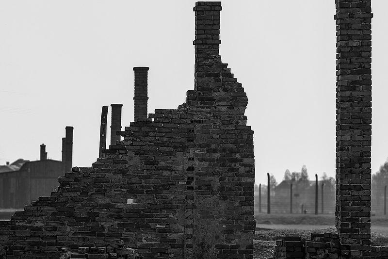 アウシュヴィッツ・ビルケナウ ナチスドイツの強制絶滅収容所(1940-1945)の画像8