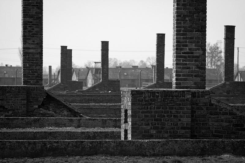 アウシュヴィッツ・ビルケナウ ナチスドイツの強制絶滅収容所(1940-1945)の画像9