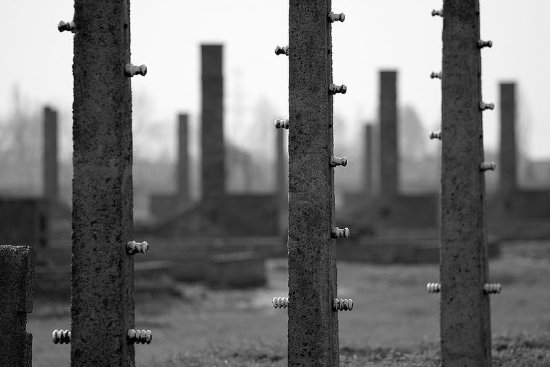 アウシュヴィッツ・ビルケナウ ナチスドイツの強制絶滅収容所(1940-1945)の画像12