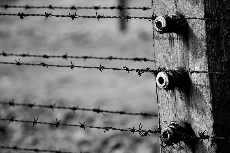 アウシュヴィッツ・ビルケナウ ナチスドイツの強制絶滅収容所(1940-1945)の画像13