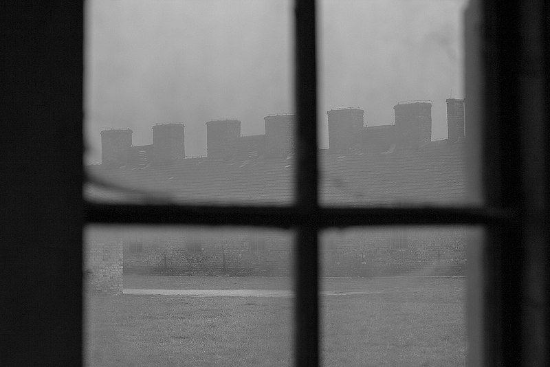 アウシュヴィッツ・ビルケナウ ナチスドイツの強制絶滅収容所(1940-1945)の画像17