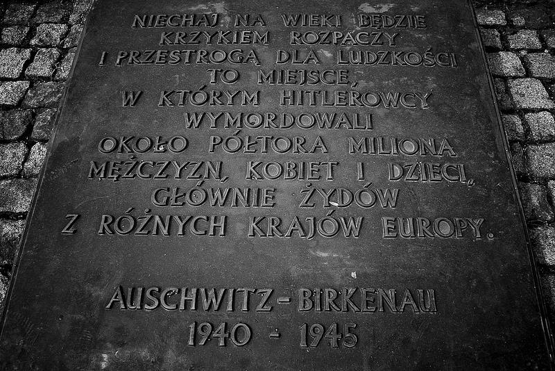 アウシュヴィッツ・ビルケナウ ナチスドイツの強制絶滅収容所(1940-1945)の画像20