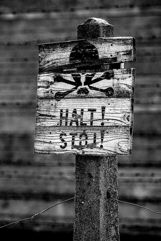 アウシュヴィッツ・ビルケナウ ナチスドイツの強制絶滅収容所(1940-1945)の画像25