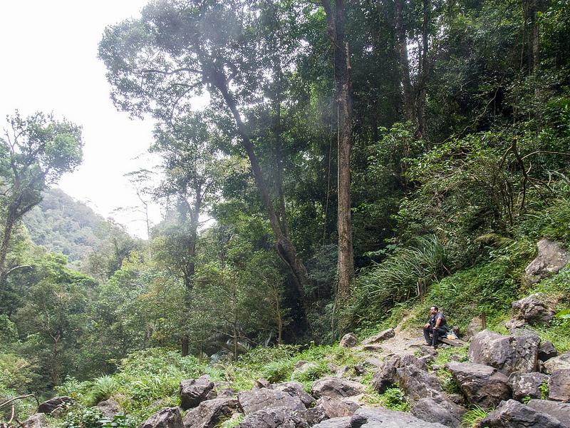 キナバル自然公園の画像13