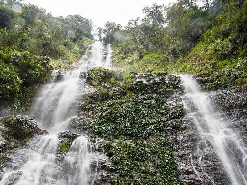 キナバル自然公園の画像14