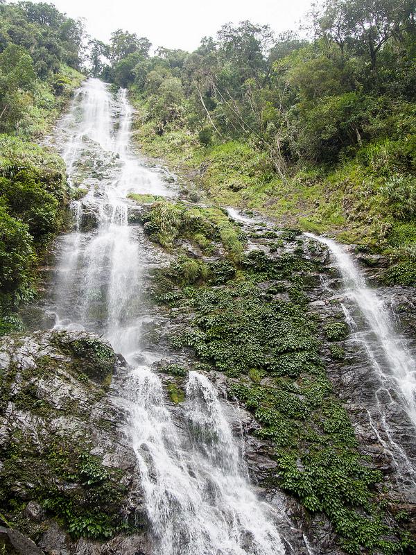 キナバル自然公園の画像15