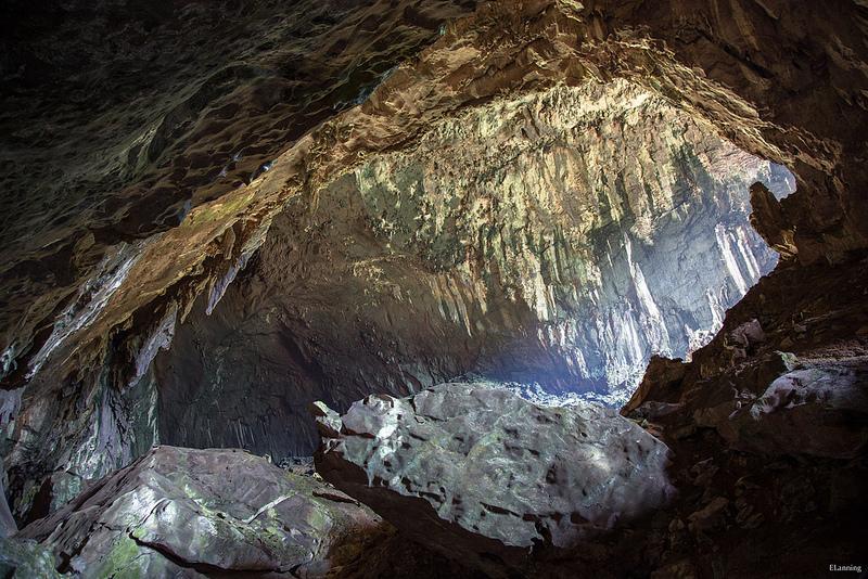 グヌン・ムル国立公園の画像5