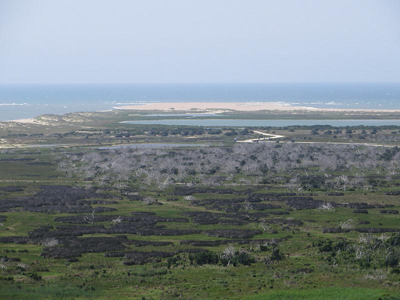 カリフォルニア湾の島々と保護地域群の画像12