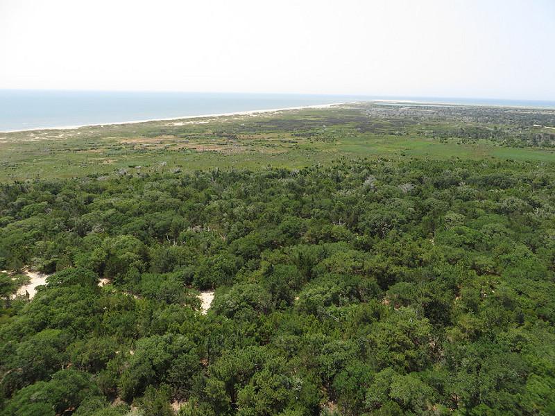 カリフォルニア湾の島々と保護地域群の画像15