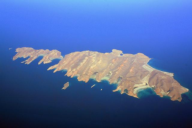 カリフォルニア湾の島々と保護地域群の画像25