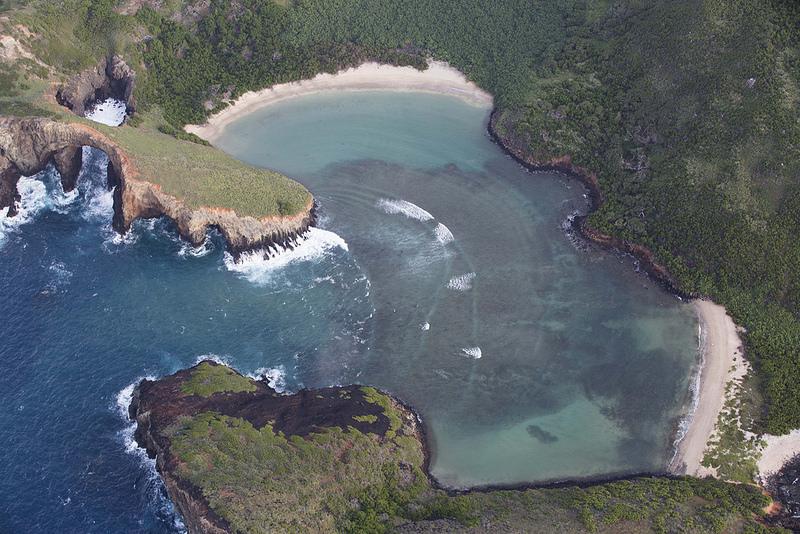 レビジャヒヘド諸島の画像7