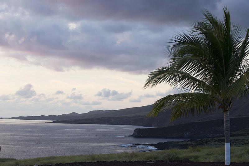 レビジャヒヘド諸島の画像11