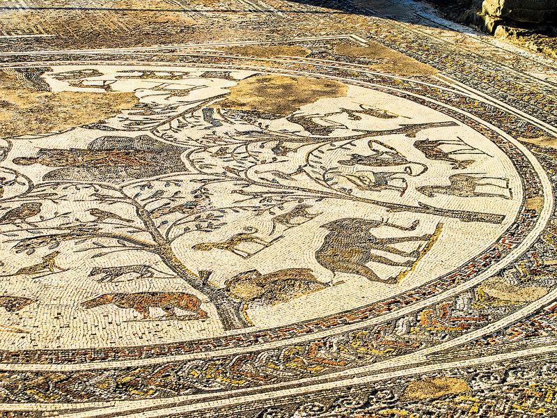 ヴォルビリスの古代遺跡の画像5