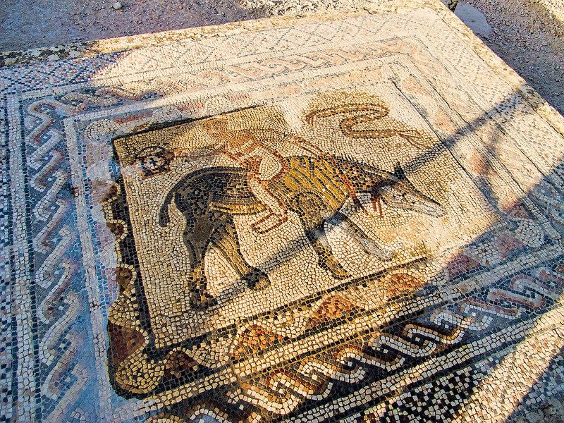 ヴォルビリスの古代遺跡の画像10