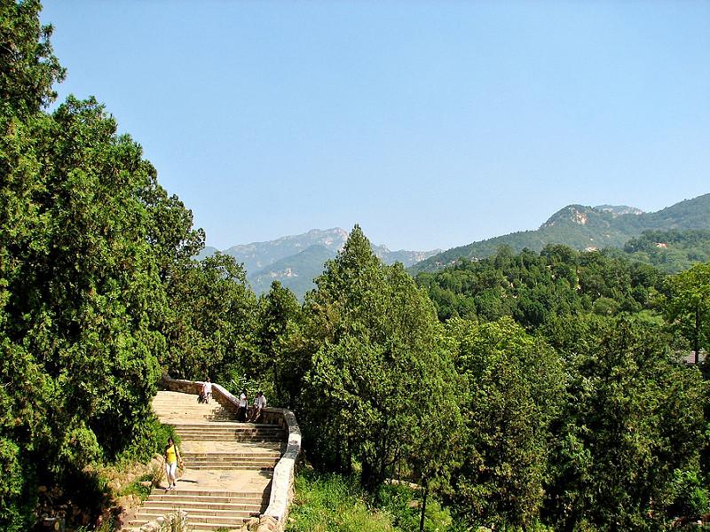 泰山の画像6