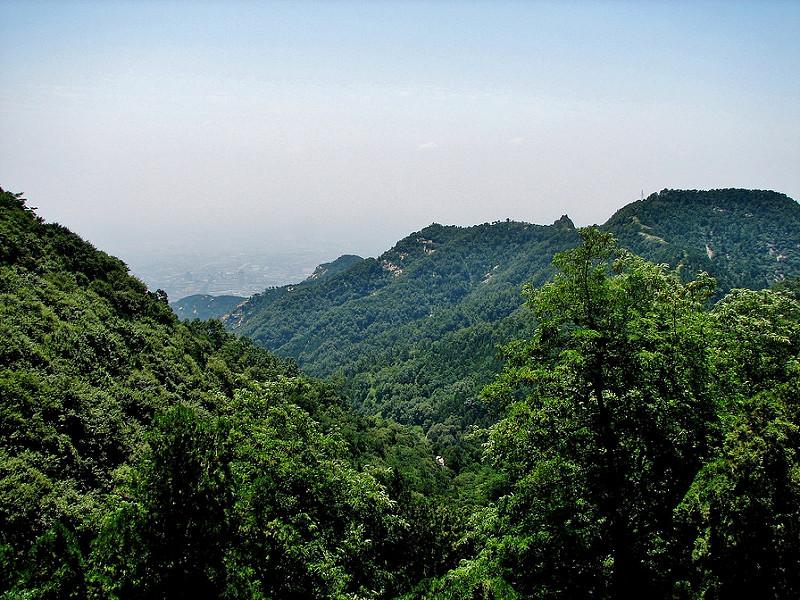 泰山の画像13
