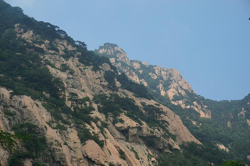 泰山の画像27