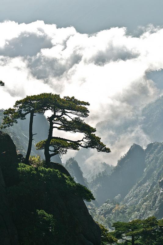 黄山の画像13