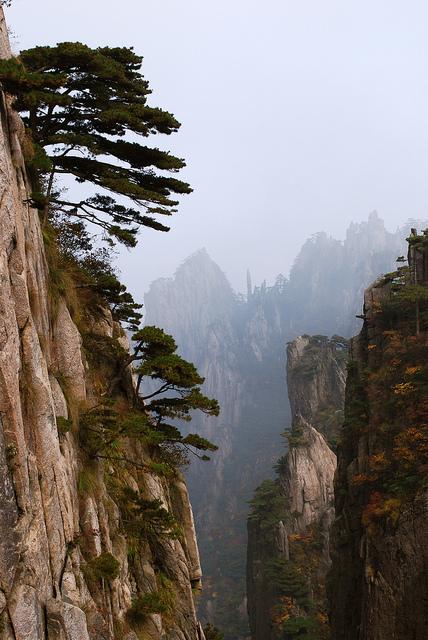 黄山の画像20