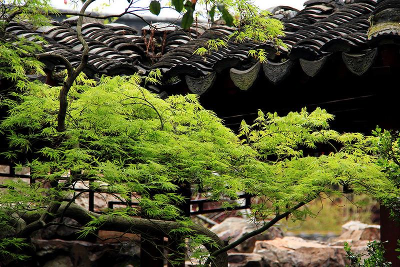 蘇州古典園林の画像1