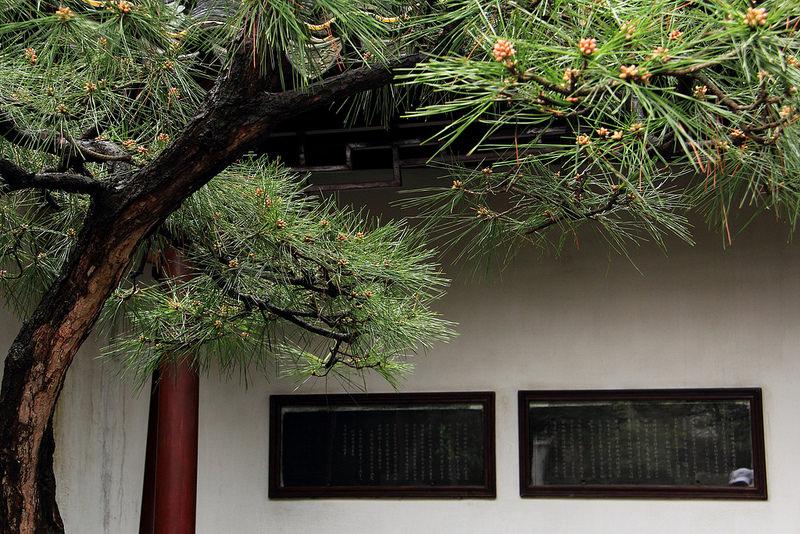 蘇州古典園林の画像5