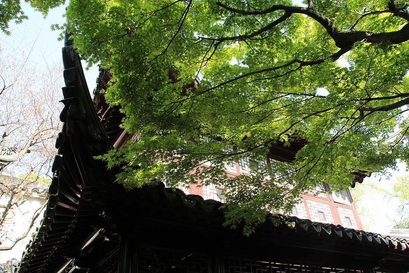 蘇州古典園林の画像15