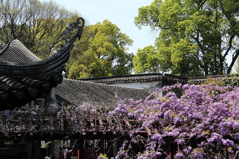蘇州古典園林の画像21