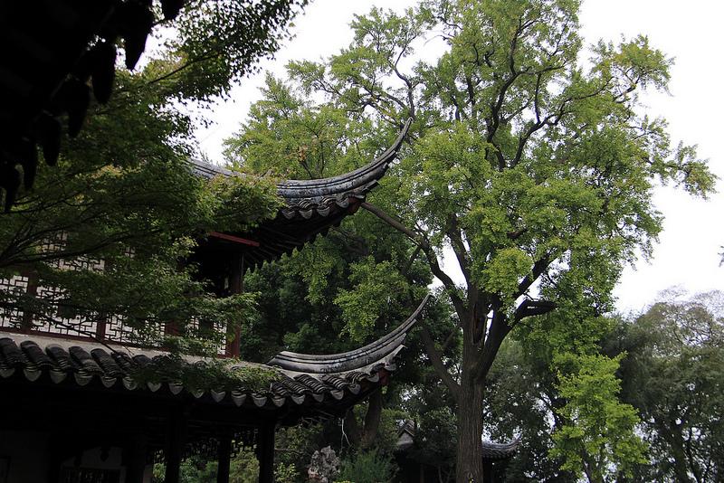 蘇州古典園林の画像25