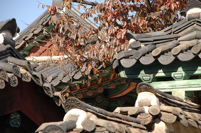 昌徳宮の画像5