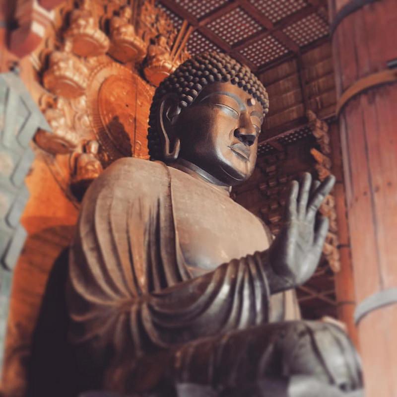 古都奈良の文化財の画像7