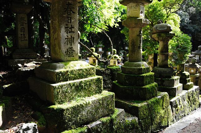 古都奈良の文化財の画像19