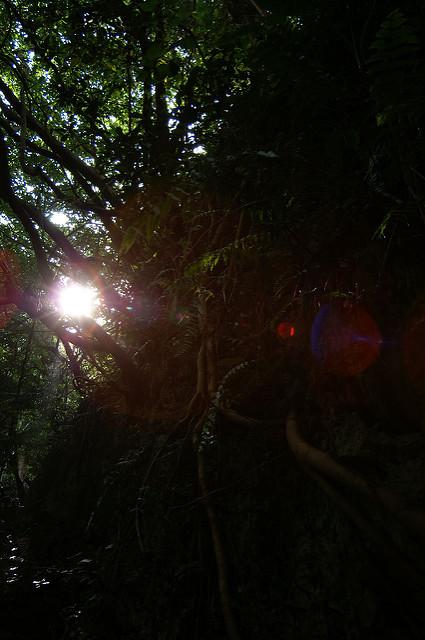 琉球王国のグスク及び関連遺産群の画像13