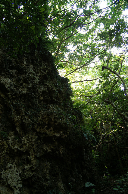 琉球王国のグスク及び関連遺産群の画像15