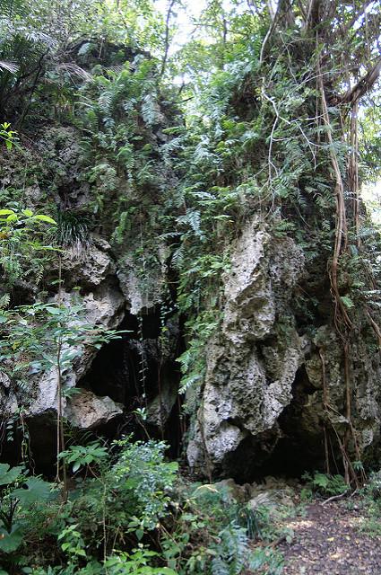 琉球王国のグスク及び関連遺産群の画像17